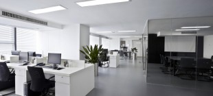 Coolest Renovations for Your Office Space